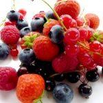 Poziomki, jeżyny i porzeczki – sezon na leśne owoce
